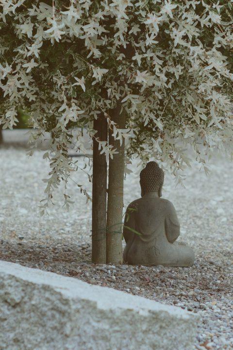 Baas in Eigen Brein VI: Mindfullness. autisme, empathie en boeddhisme