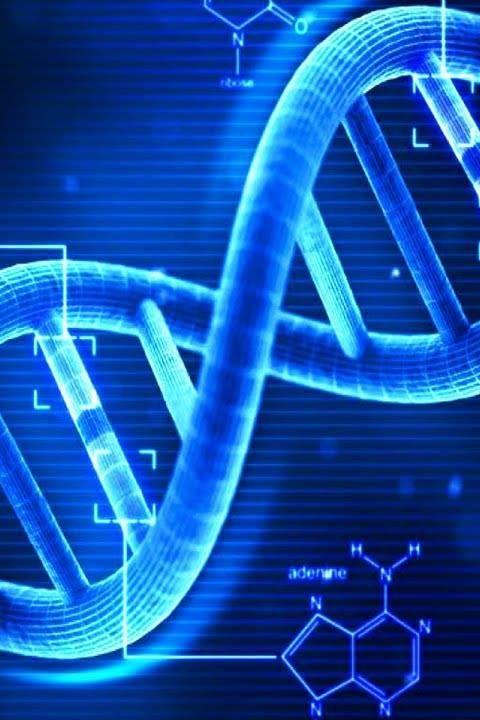 Swammerdam goes Baantjer: Forensisch DNA onderzoek